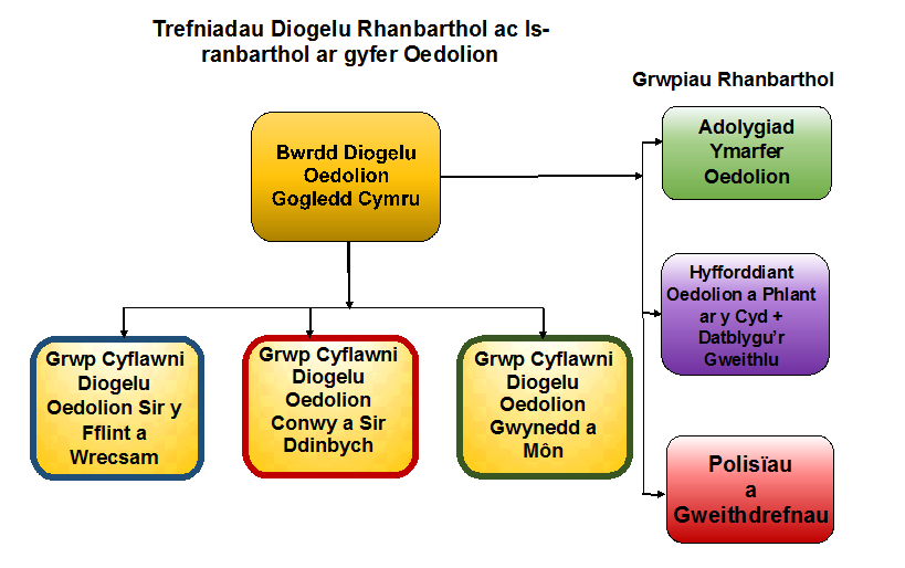 Structure Diagram Adults #(Welsh)