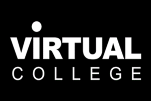 Virtual College – E-learning – Basic Awareness of Domestic Abuse including the Impact on Children, Young People and Adults at Risk