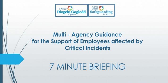 Multi Agency Guidance