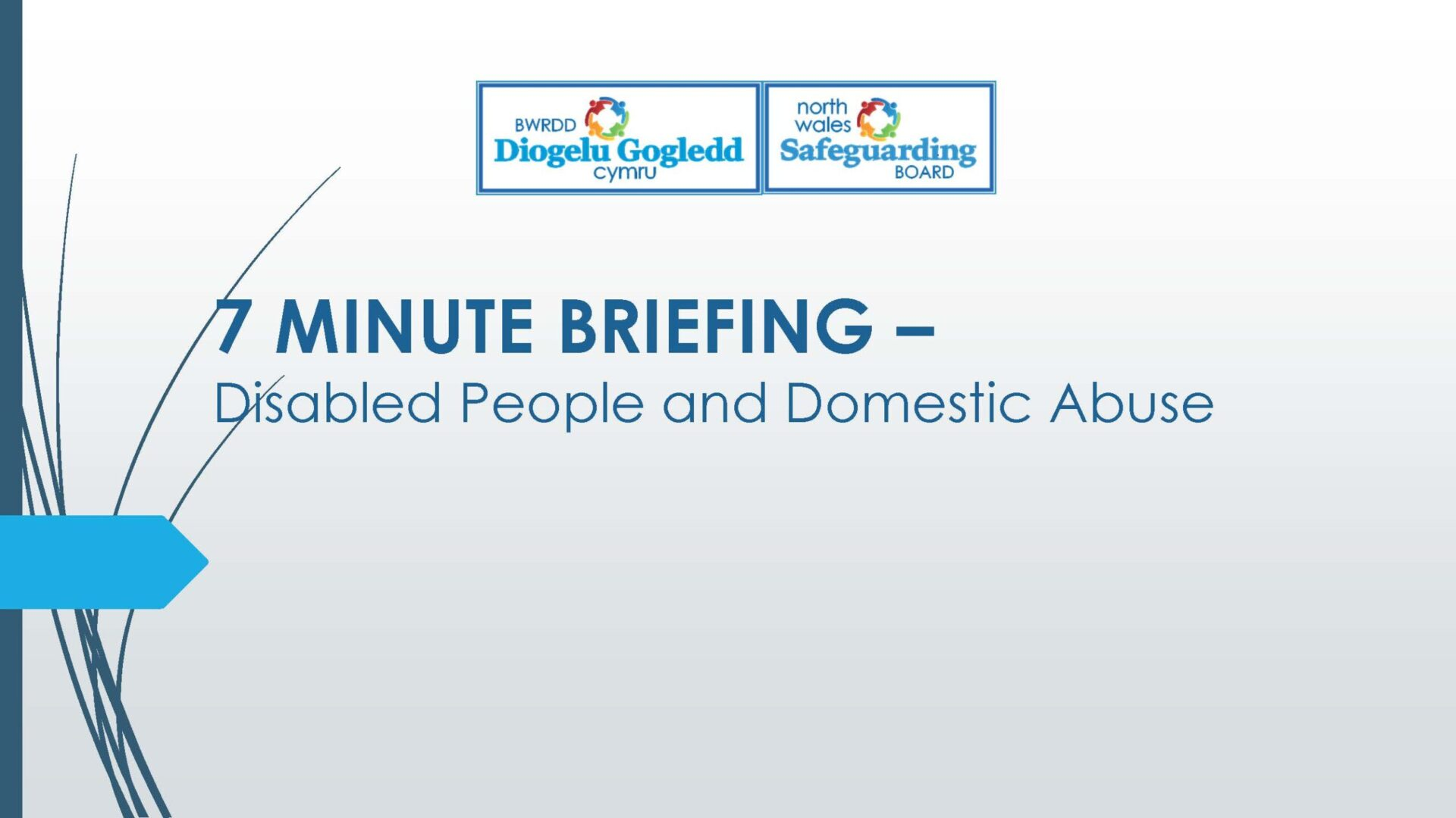 Disabled People and Domestic Abuse