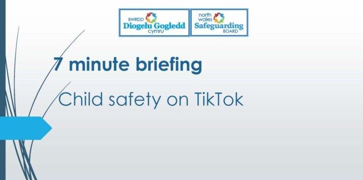 Child Safety on TikTok