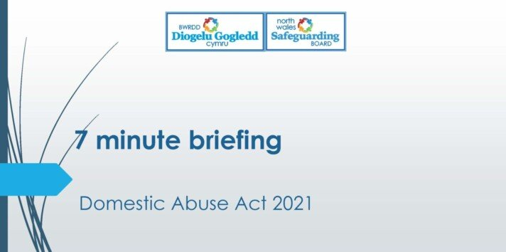 Domestic Abuse Act 2021