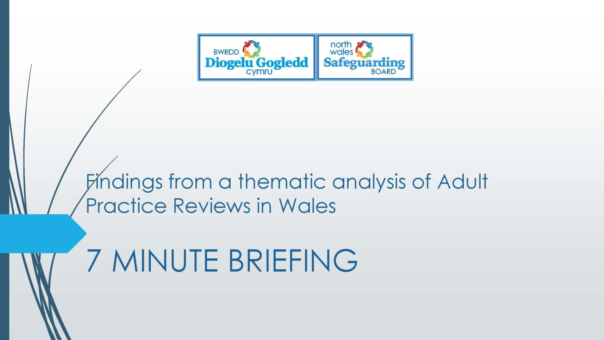 Thematic Review of Adult Practice Reviews