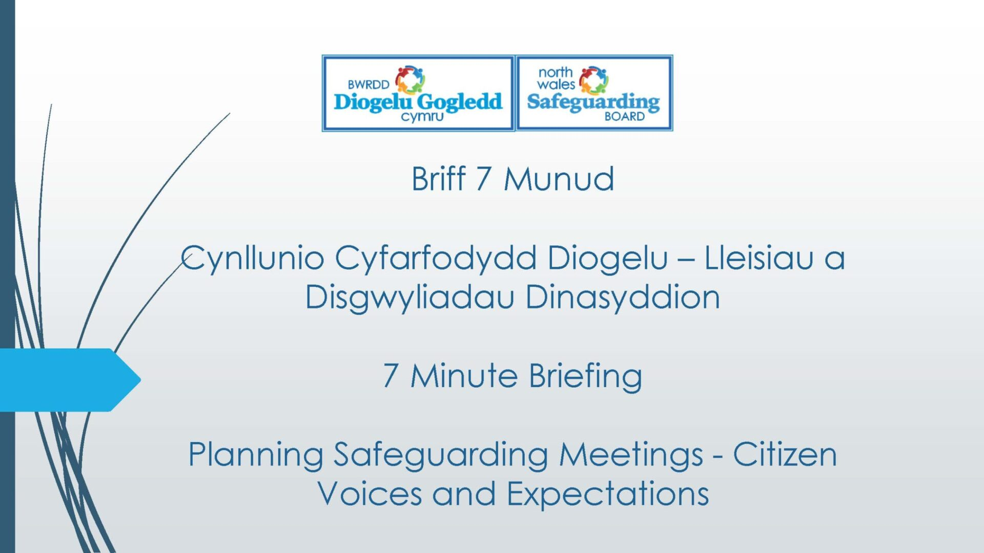Planning Safeguarding Meetings - Citizen Voices and Expectations